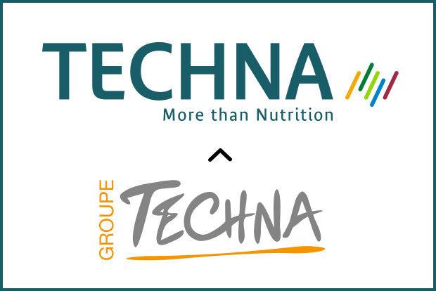 techna new brand portfolio