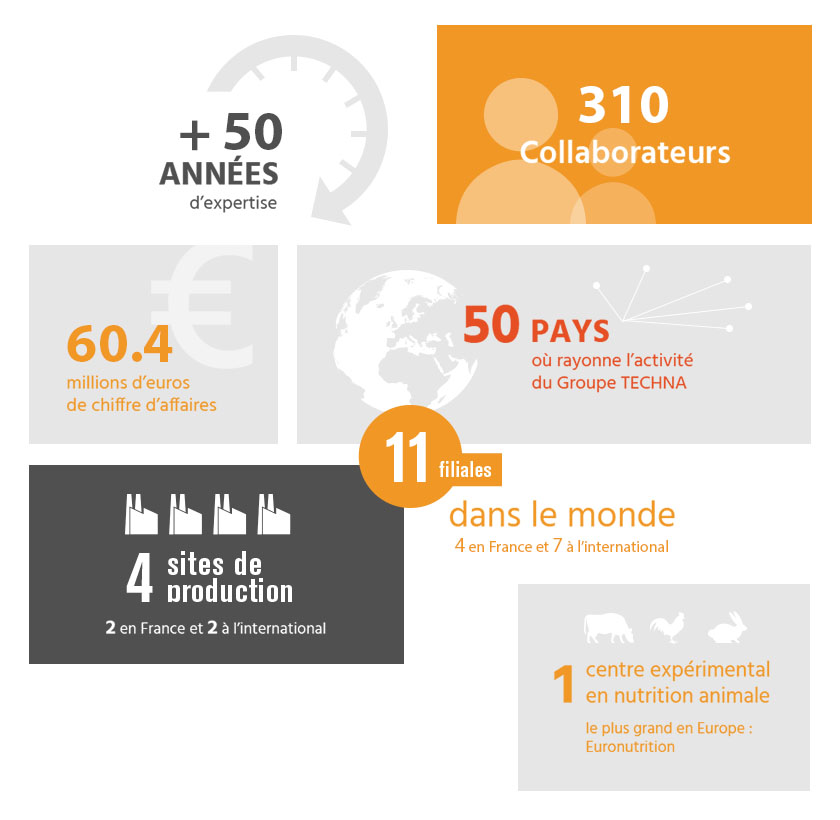 infographie chiffres cles groupe techna