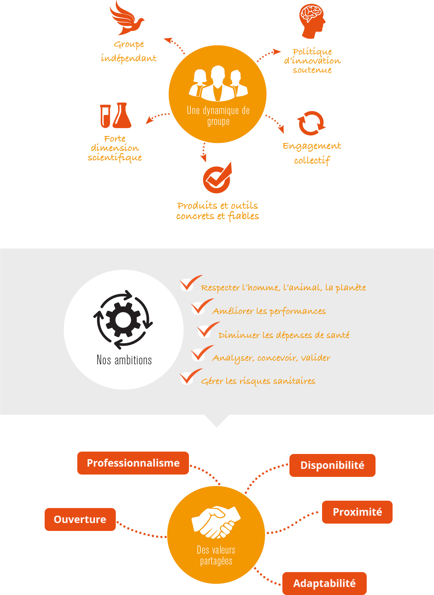 schema missions et valeurs du groupe techna